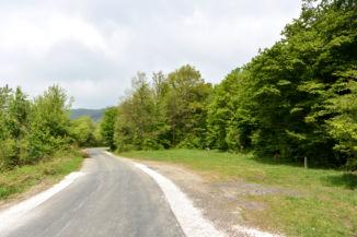 erdészeti aszfaltút az Égett-Hársnál