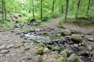 a szurdokon átfolyó Rám-patak a Dömösi-Malom-patakba folyik