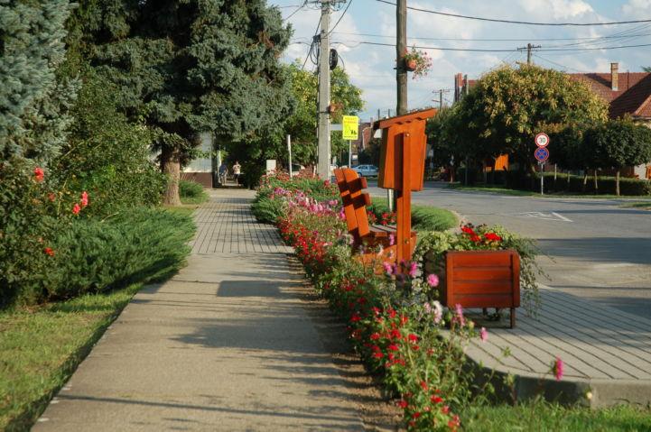 utcakép virágokkal