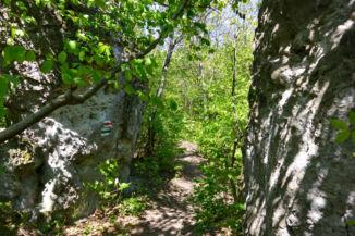 Hármas szikla nevű andezit tornyok a Kis-Kúria-hegy tetején