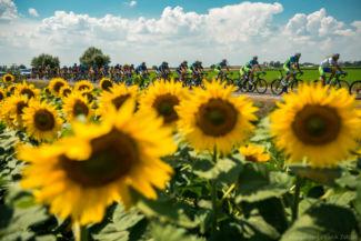 sík terepen halad a 2016-os Tour de Hongrie mezőnye