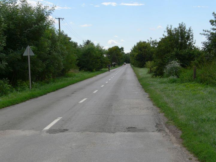 Bácsbokod és Bácsborsód közötti útszakasz