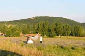 esküvői fotózás a levendulásban