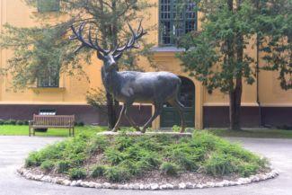 szarvasszobor a Karapancsai Kastély előtt