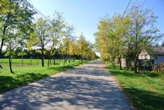 a Dózsa térről a Rákóczi úton indulunk tovább az Öregországútig