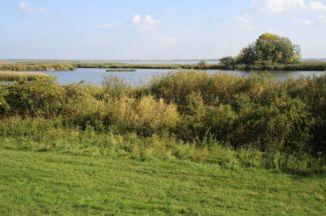 a Tisza-tó Sarud közelében