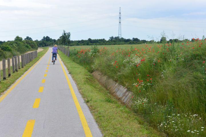 bicikliút Veszprém és Nemesvámos között