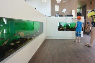 akváriumok a Bodorka Látogatóközpont bejáratánál