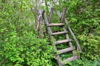 kerítésen átvezető létra a Csenke-pataknál