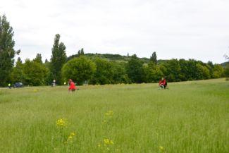 biciklisek hajtanak a méteres fűben az Apáti templomrom közelében