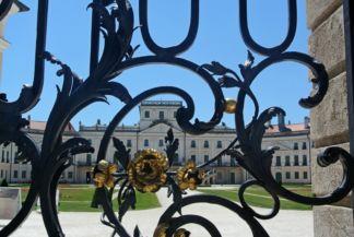 a kastély kovácsolt vas kapuja