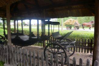 régi halottaskocsi, mögötte mai szekér