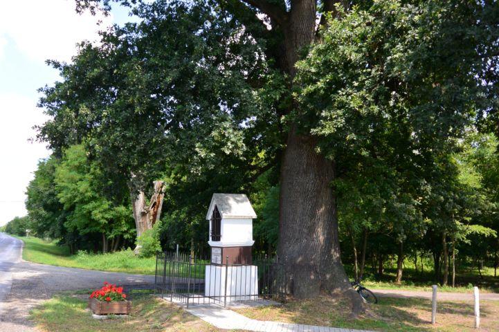 török uralom alóli felszabadulás emlékműve a Rákóczi-fa alatt