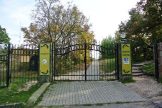 a Sas-hegy pannon gyíkokkal díszített bejárata