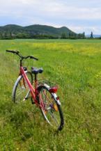 bicikli az Aszófő és Tihany közötti kerékpárút mellett