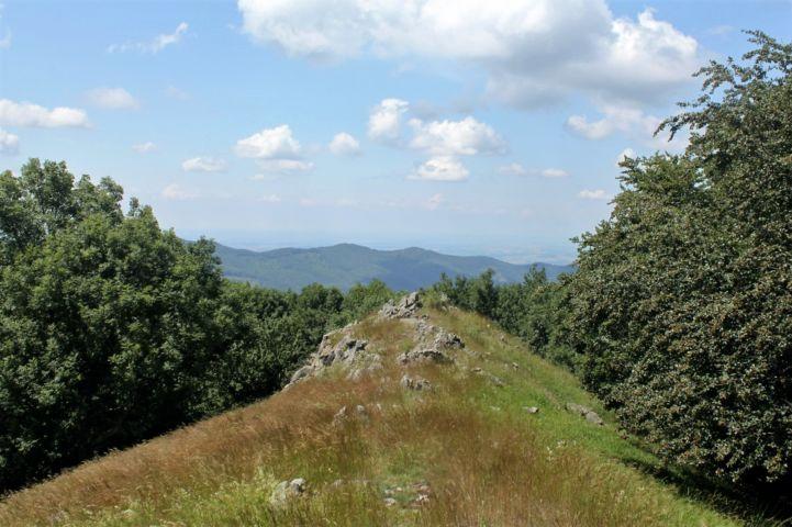 kilátás a Szabó-kövek környékéről