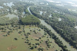 Kopácsi Rét Természetvédelmi Park Fotó: Zöld Eszék/Antunovac