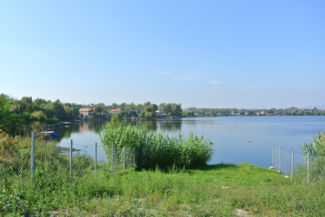 a Kavicsos-tó egyik szabadon látogatható part-menti szakasza