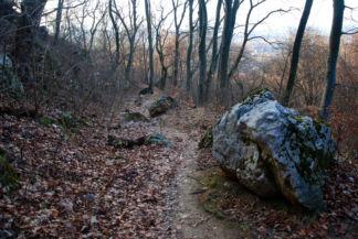Turistaút a Kecske-hegy - Lábas-hegy közötti, szurdokszerű völgyben