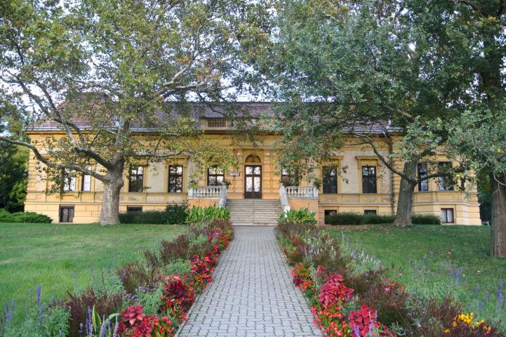 az egykori Meszleny-Wenckheim-kastély, ma könyvtár