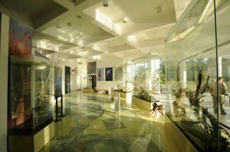 a Tisza-tavi Ökocentrum egyik kiállítótere