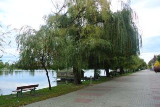 séta a Szegedi Kis István sétányon