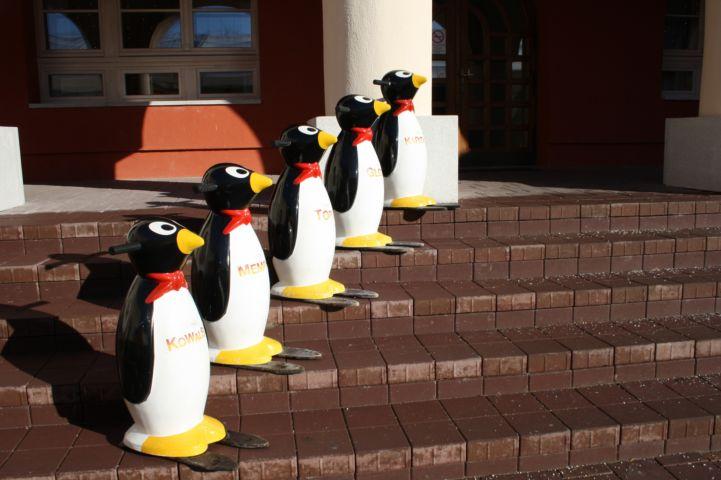 a Hatvani Jégpálya pingvinjei