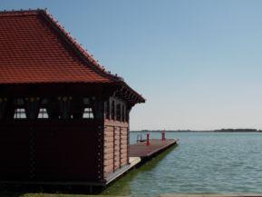Palicsi tó