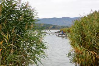 Jenői-tó