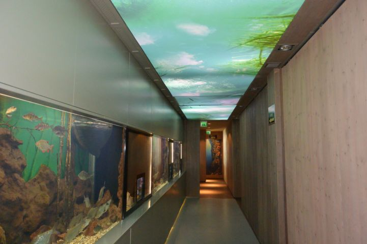 interior of the Bodorka Balaton Aquarium