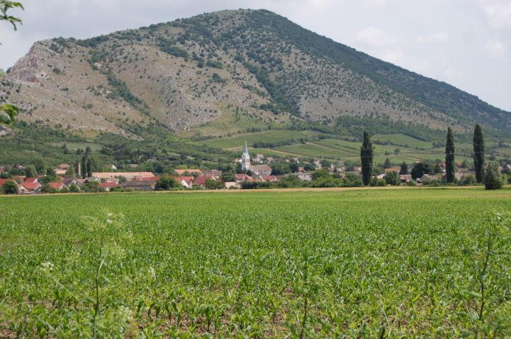 Szársomlyó, in the foreground Nagyharsány