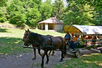 salföldi pálos kolostor rom - lovaskocsival hozzák a látogatókat