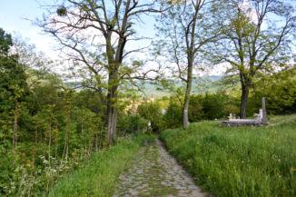 a temető mellett vezet a piros turistajelzés