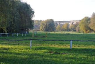 lovaspálya, mögötte a Viadukttal
