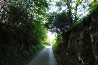 löszfalak mellett vezet az út Töreki határában