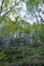 badacsonyi bazaltoszlopok a Kőkapunál