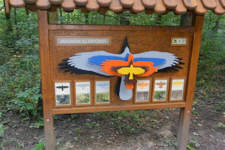 ismertető tábla az itt élő madarakról a Kamaraerdő Tanösvényen