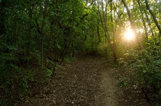 ösvény a Rupp-hegyen