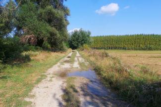 útszakasz a Zichy-kápolna és Lórév lakott területe között