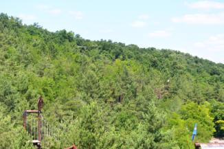 kalandpark a fák lombjai közt