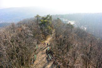 kilátás a János-hegy keleti oldalára