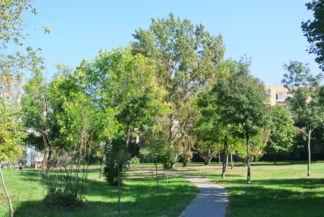 parkon át vezet a Szabadság utcát és a Nyuszi sétányt összekötő útvonal