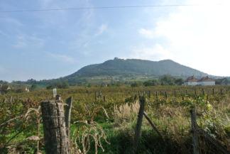 Somló hegy