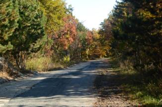 őszi színekben pompázó erdő kísér utunkon