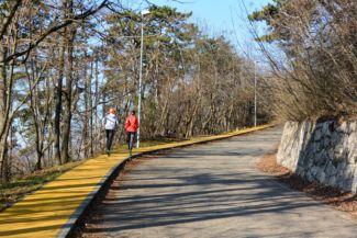 az Erzsébet-kilátóhoz vezető út, a szélén rekortán a futóknak