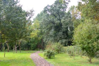 Karapancsai Kiskastély parkja
