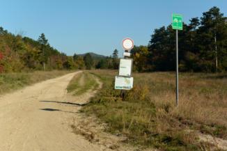 homokos, süppedős erdészeti út