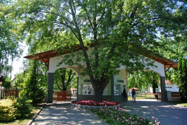 a Sá-Ra Termálfürdő bejáratát egy szép fa rejti
