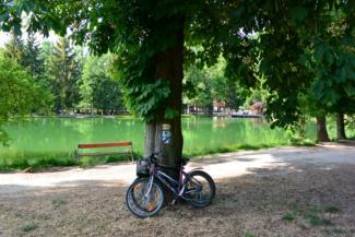 kerékpárok a Felsőtárkányi-tó partján