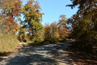 követjük az utat a Nagy-Messzelátó-hegy kerékpáros pihenőhely felé